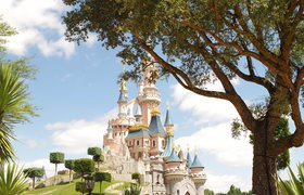 Попасть в высшую лигу: опыт компании, которую заметили в Disney