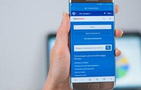В России зафиксирован резкий рост числа поддельных сайтов «Госуслуг»