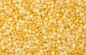 На полях и фабриках: какие инновации появляются в сфере растительных белков