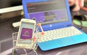 Онлайн-ритейлер Wildberries открыл 3,5 тысячи новых рабочих мест