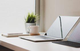 Новый коллектив: как распознать самых влиятельных в офисе и определить корпоративную культуру