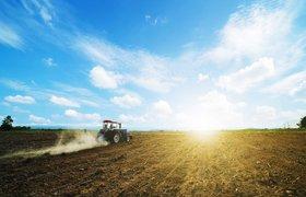 Калифорнийские спутники помогут российскому агротеху следить за урожаем