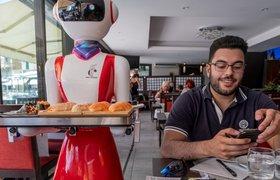 Как получить выгоду от внедрения сервисного робота