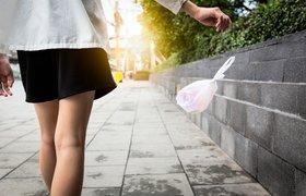 В Ессентуках фотографии тех, кто мусорит, будут выкладывать в соцсети