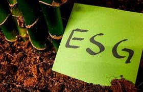 Как перейти к устойчивому росту: управленческие лайфхаки по повышению ESG-показателей