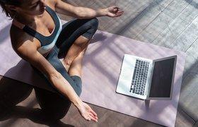 На фоне самоизоляции выросло предложение фотосессий в Zoom и онлайн-консультаций