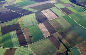 Российские ученые научились применять ИИ для распознавания земельных участков