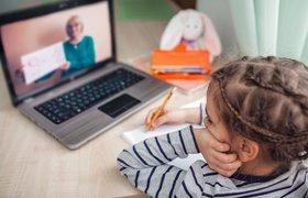От Zoom до телевизора: как разные страны справились с дистанционным обучением школьников во время пандемии