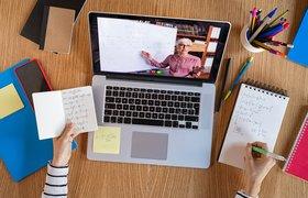 Платформа Teachmint для онлайн-уроков привлекла $20 млн