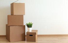 Исследование: американцы-миллениалы стали чаще покидать крупные города