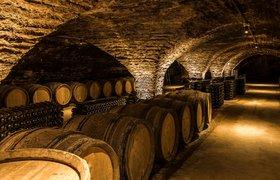 Во Франции ожидается крупнейший за 76 лет спад производства вина
