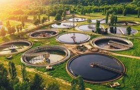 Безуглеродный путь: стартап Solugen производит химикаты из сахара