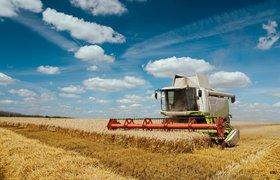 Сельское хозяйство остро нуждается в кадрах. Как развивать сотрудников в условиях цифровизации отрасли?