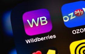 Продажи региональных предпринимателей на Wildberries выросли на 111%