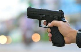 В России разработали систему видеораспознавания оружия «Антиколумбайн»