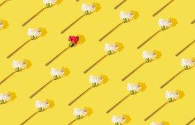 Безумные гении: 24 истории об эксцентричных предпринимателях