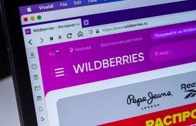 Wildberries за месяц отметил рекордные платежи за продажи через СБП