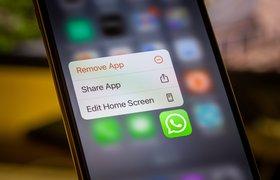 В Роскачестве назвали WhatsApp самым опасным мессенджером