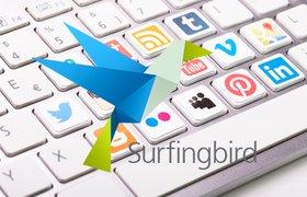 Surfingbird поможет онлайн-СМИ подбирать контент для читателей