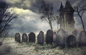 Как мы развиваем «Открытое кладбище»