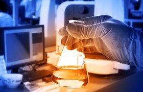 Почему я выбрала биоинформатику – мнение ученого