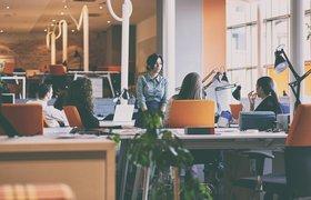 LMS vs LXP: какую ИТ-платформу выбрать для корпоративного обучения