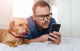 Носимые устройства для домашних животных: перспективы и вызовы