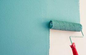 Do it yourself: как в России развивается малый бизнес в сегменте товаров для дома и стройматериалов