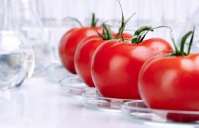 Доставка еды, альтернативное мясо  и биотехнологии: топ-6 венчурных сделок  и перспективные направления в фудтехе