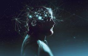Пять лайфхаков для мозга, которые помогут улучшить память