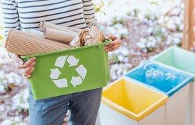 «Зеленые» и трендовые: Почти треть российских компаний внедряет экологичный подход