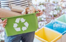 Приложение российских ученых позволит заниматься «умной» сортировкой отходов