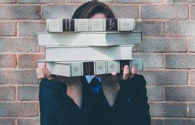 Стартап StudyFree с российскими корнями привлек $600 тысяч для выхода на новые рынки