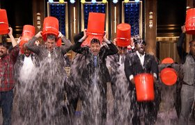 Ice Bucket Challenge собрал $8,6 млн за сутки
