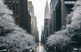 Как переехать в Нью-Йорк: опыт графического дизайнера