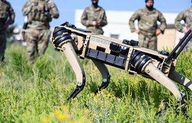 В США разработали робота в виде собаки с боевым оружием на спине