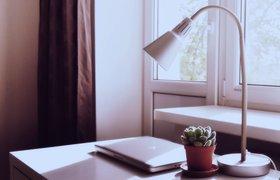 Работа с пяти утра и двухчасовые перерывы: как необычный график повышает продуктивность удаленщиков