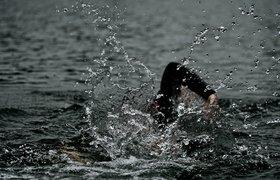 Как я провел лето: истории пловцов, которые проплыли 106, 33 и 26 километров