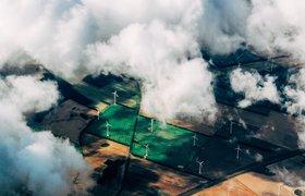 Экологичный бизнес: шесть шагов для сокращения углеродного следа