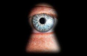 """Требование """"прекратить слежку"""" подписали уже более полмиллиона человек"""