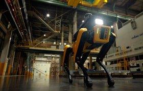 На заводе Kia появился новый сотрудник — четвероногий робот
