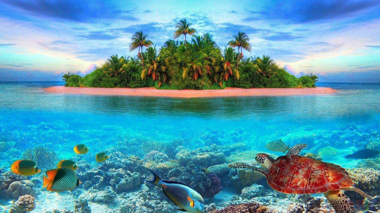 Открытки райской жизни