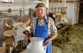 Каких технологий не хватает сельскому хозяйству?