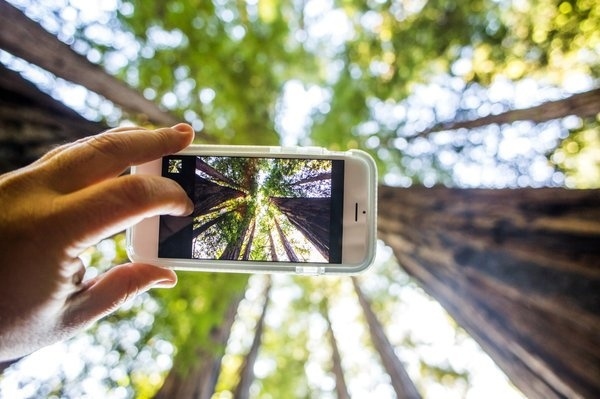 Цифровые датчики изображений