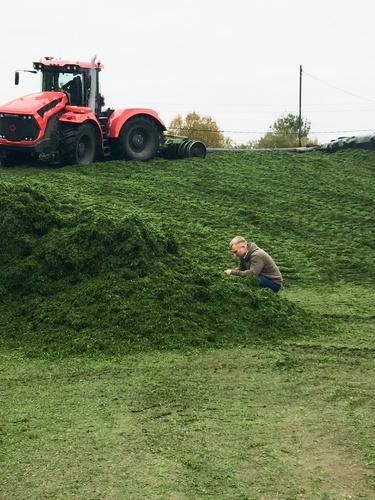 Ричард Рон на ферме