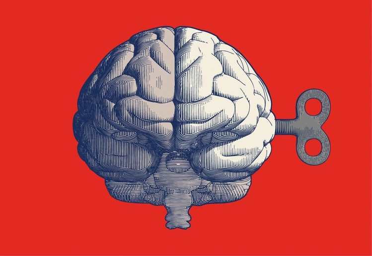 Мозг и ключ