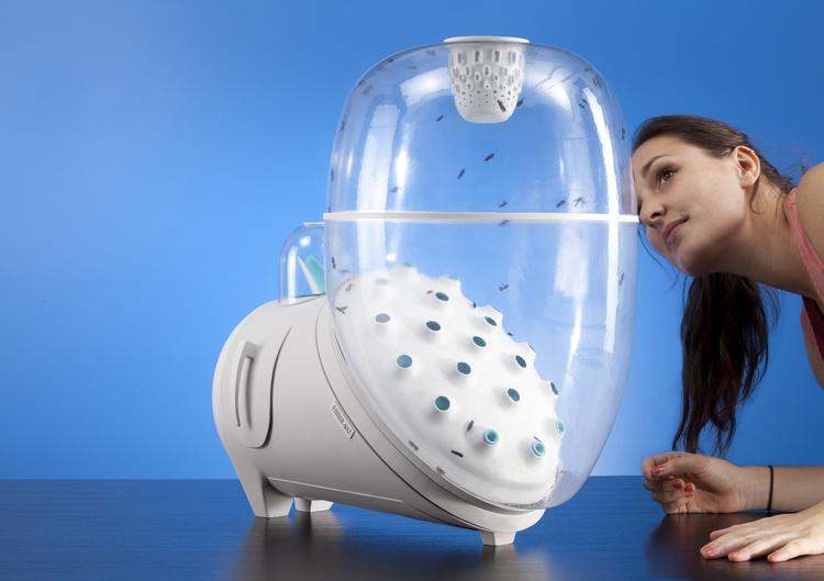 Farm 432, устройство для производства белка из мух в домашних условиях