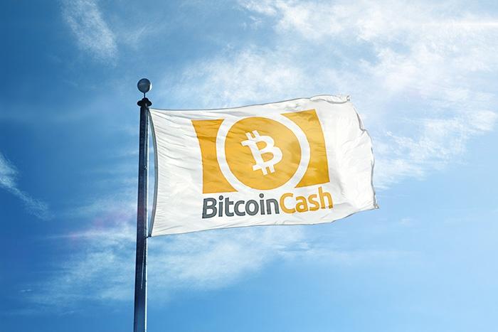 Логотип Bitcoin Cash