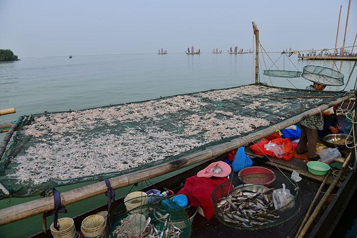 Рыбаки на реке Тайху